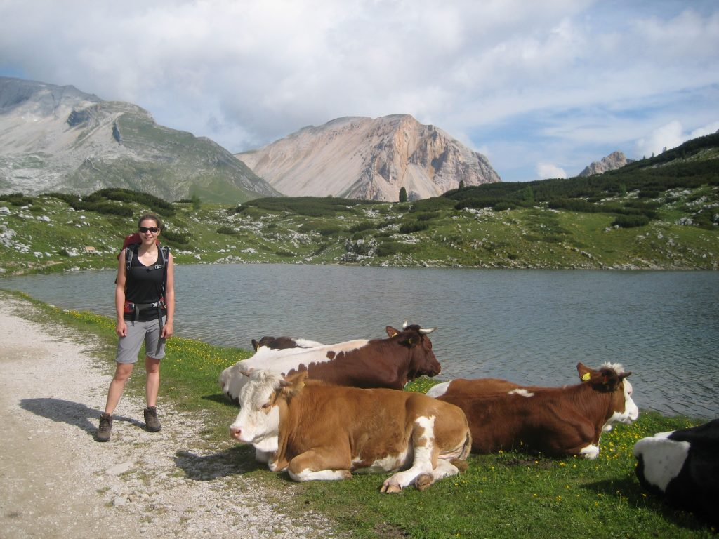 Posing with cows 2