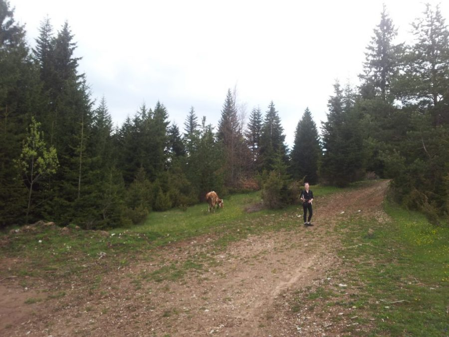 Hiking from Sarajevo to Vukov Konak