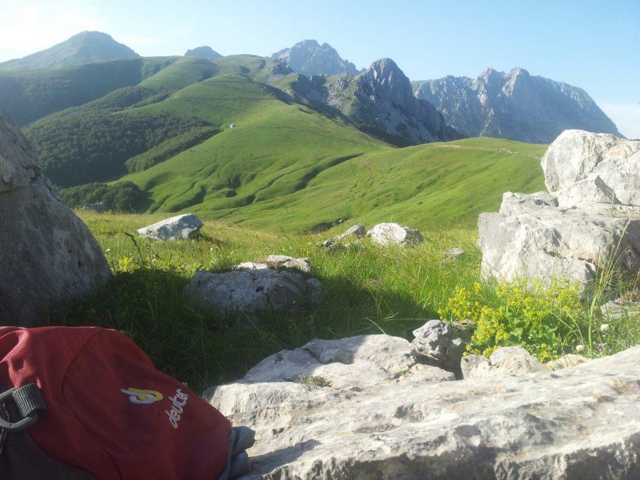 Groene bergen van Komovi