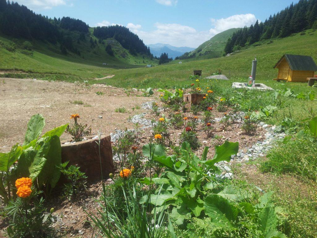 De tuin van eko katun Kolibe Damjanovića