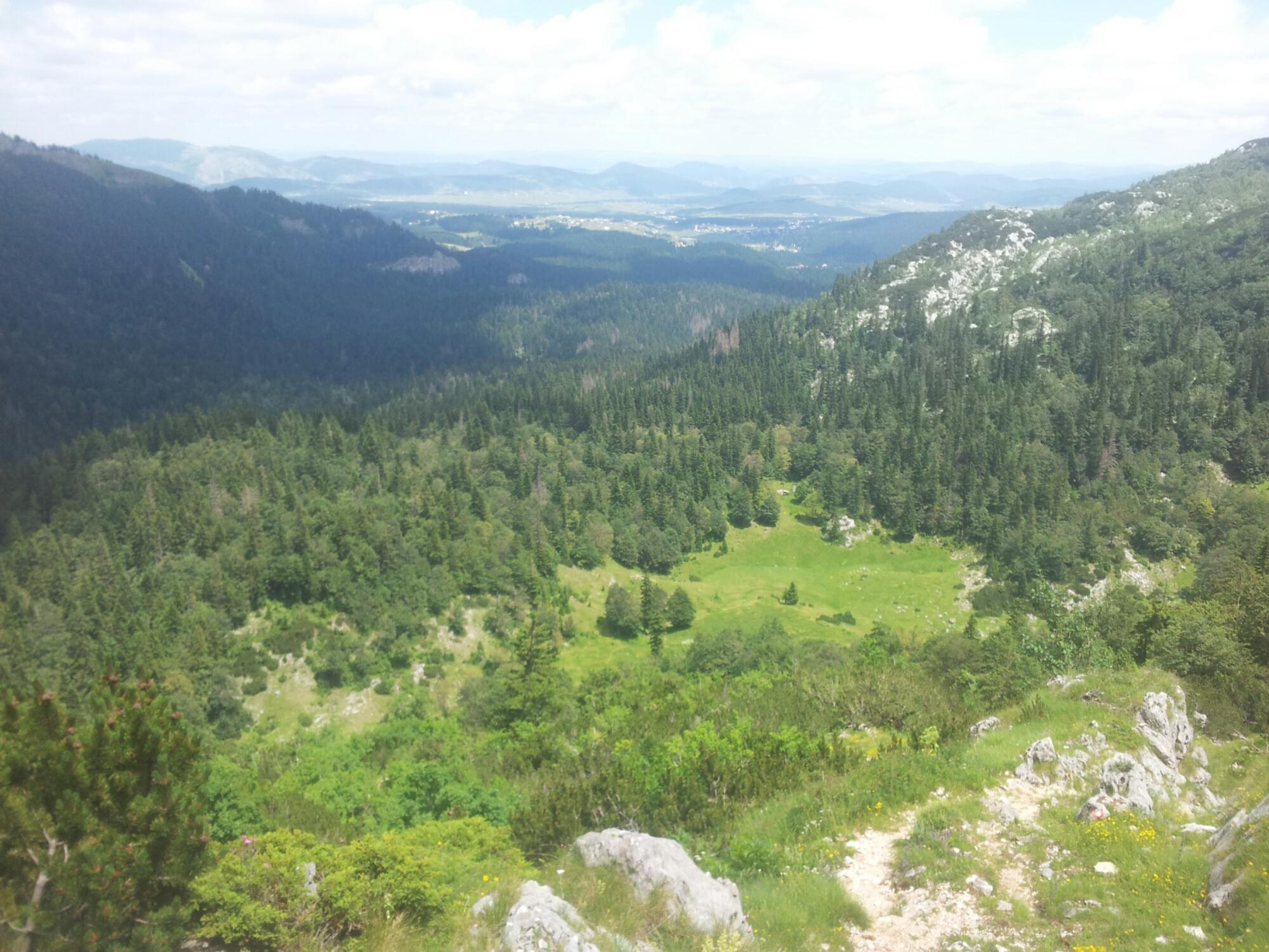 Crepulj Poljana Durmitor Žabljak Crna Gora | Hiking Via Dinarica Montenegro
