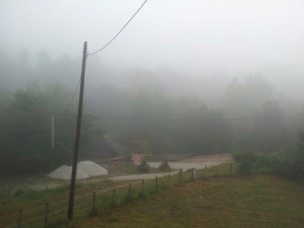 Misty, but thriving tjentiste