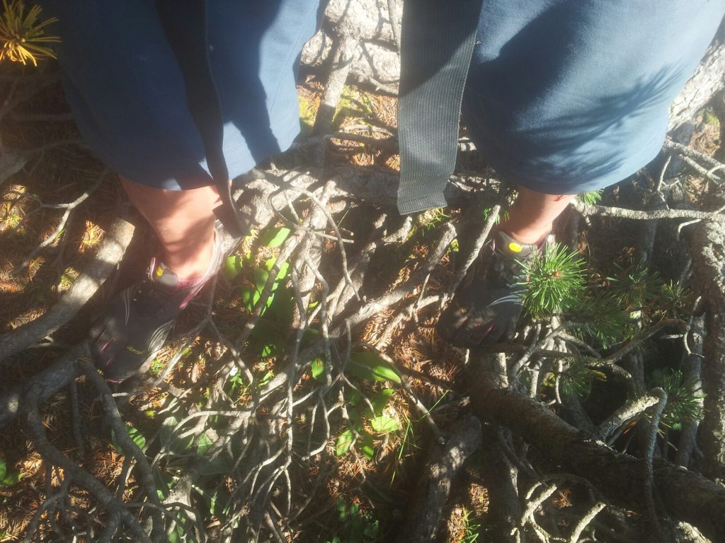 Vibram FiveFingers   Balanceren in een Dwarfpinforest