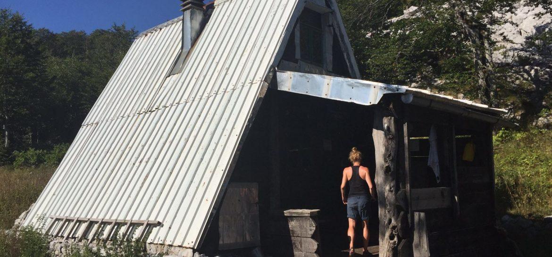 BLOG | Hond in de hut