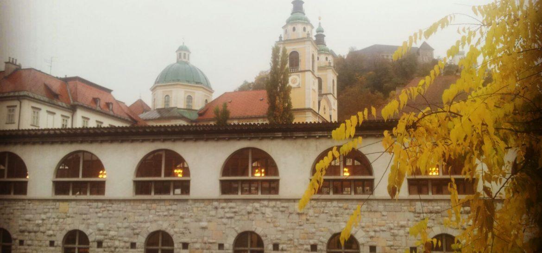 BLOG | Ljubljana full of life