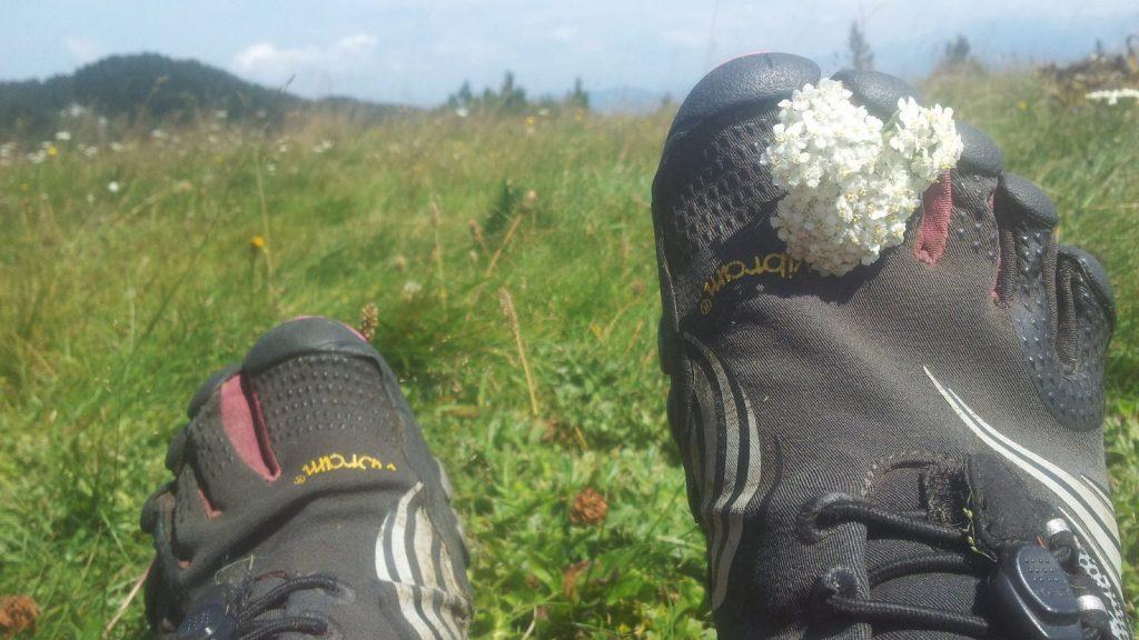 BLOG | Waar zijn je schoenen? | Wandelen op FiveFingers