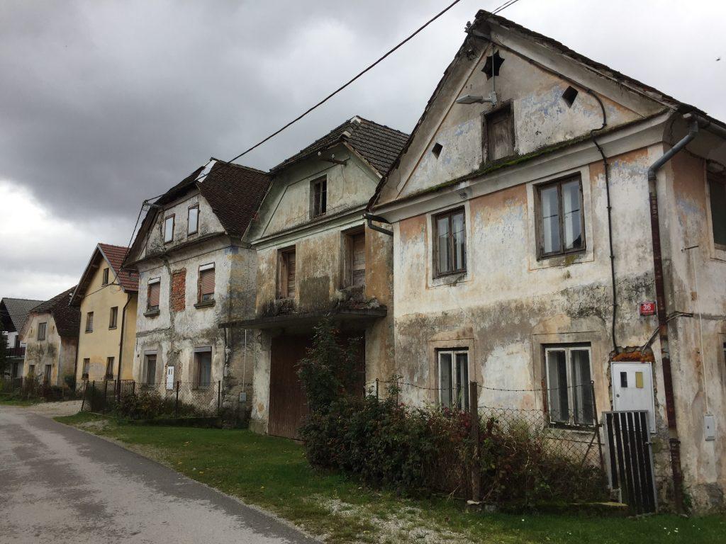 slovenia_dolenje_jezero_cow_street