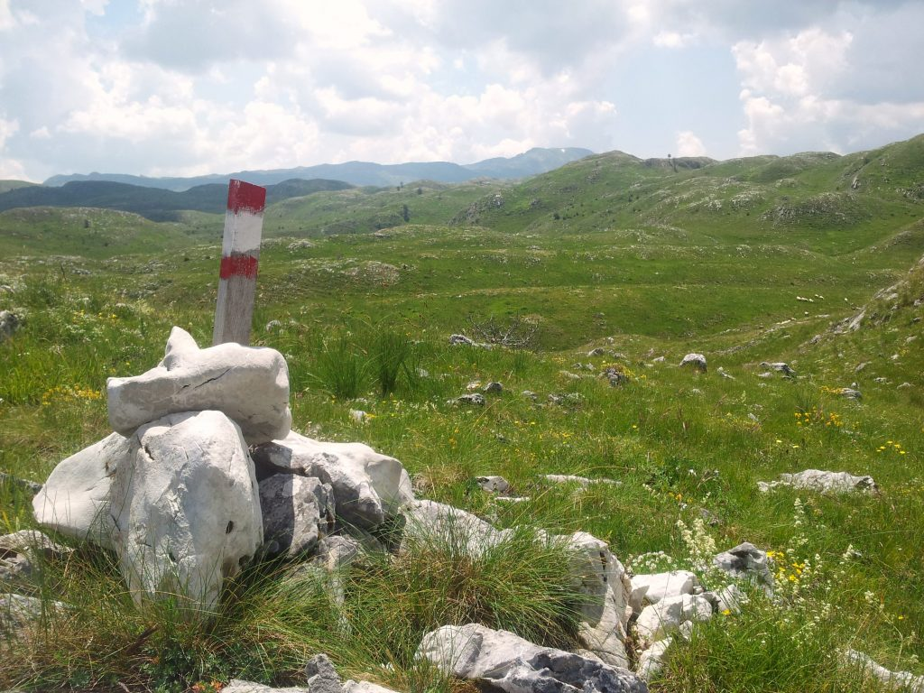 Sinjajevina, grass and marker | Hiking Via Dinarica White Trail through the Mountains of Montenegro