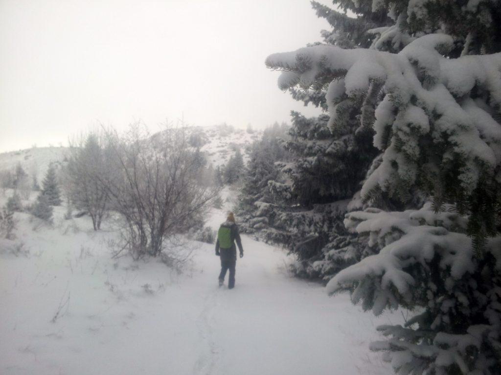 Hiking_from_vukov_konak_to_crepoljsko_bosnia_herzegovina_via_dinarica_green_trail_in_the_snow
