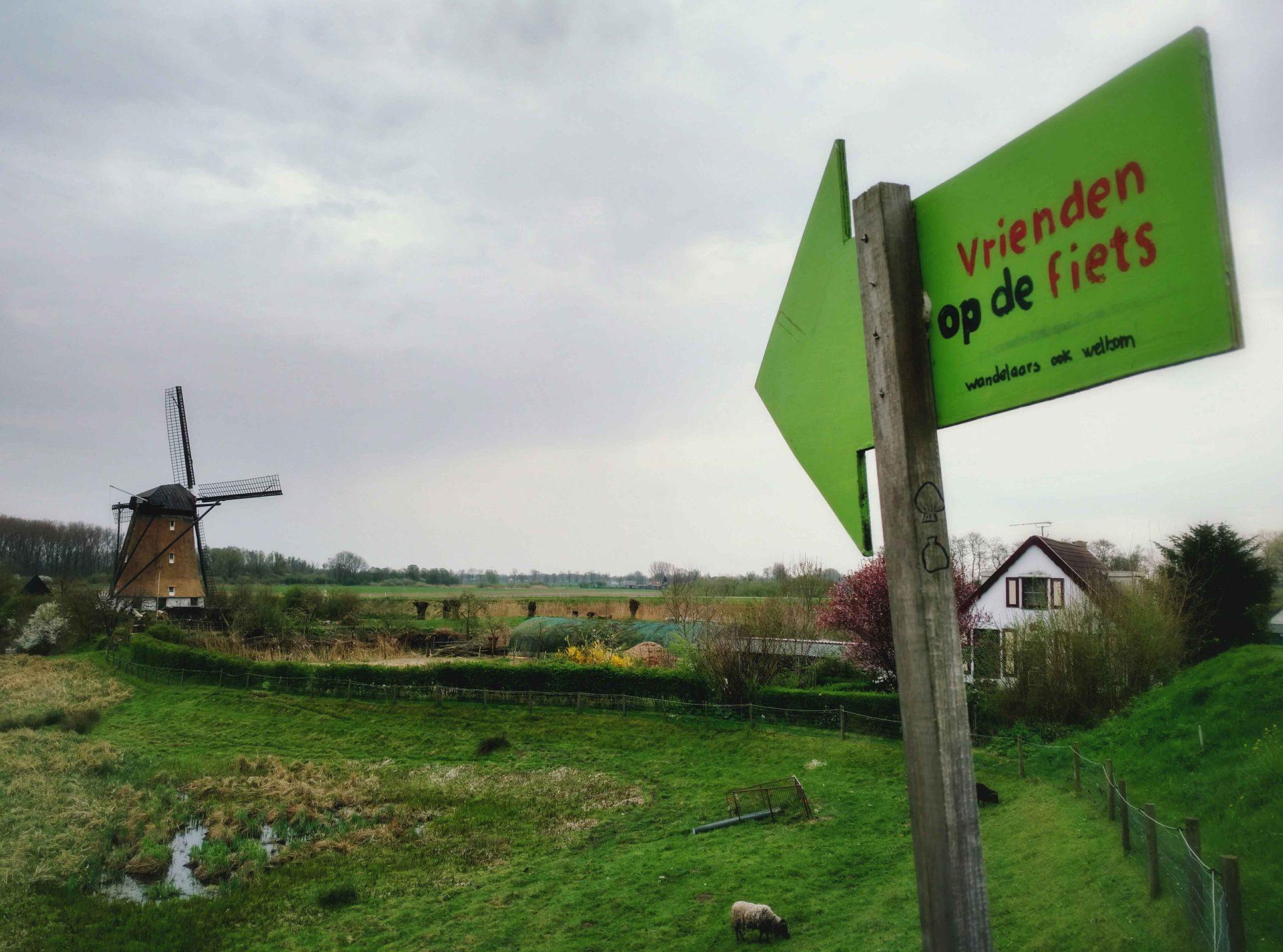 Camp_in_my_garden_Meidijk