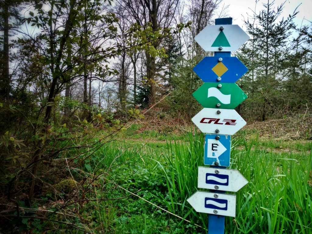 Eisleck_trail_luxembourg