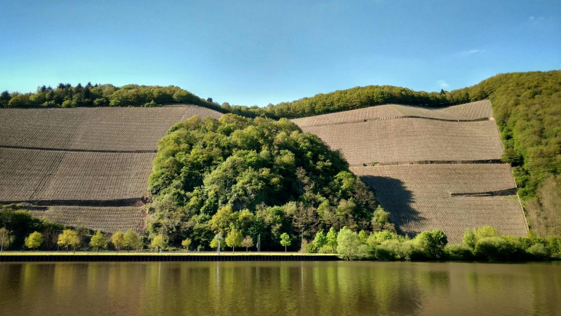 BLOG | Saarweinwanderweg en de Caroline-test