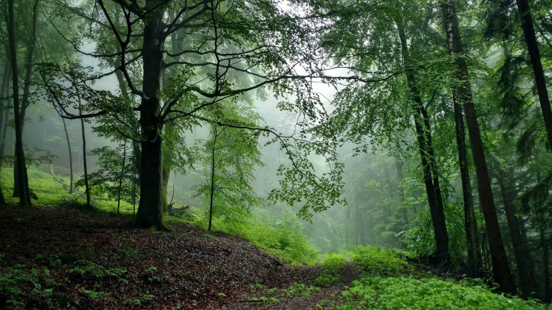BLOG | Na zonneschijn komt regen