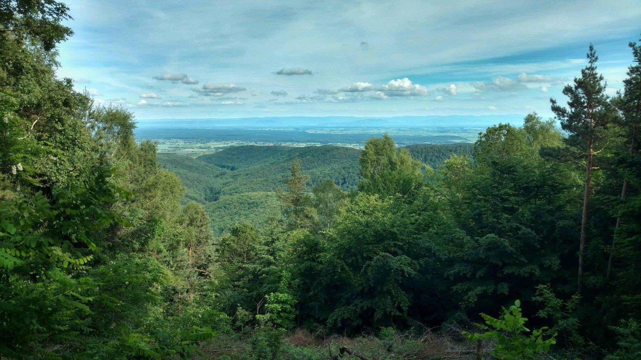 Uitzicht_op_schwarzwald