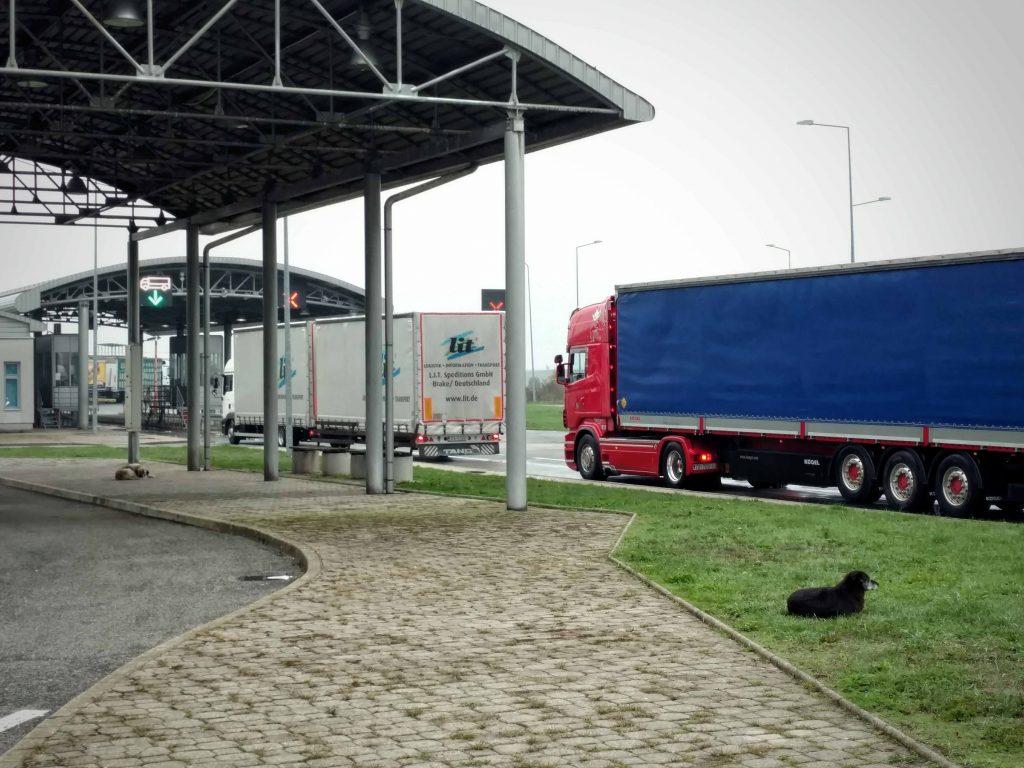Honden in Bosnië en Herzegovina bij de grensovergang met Kroatië