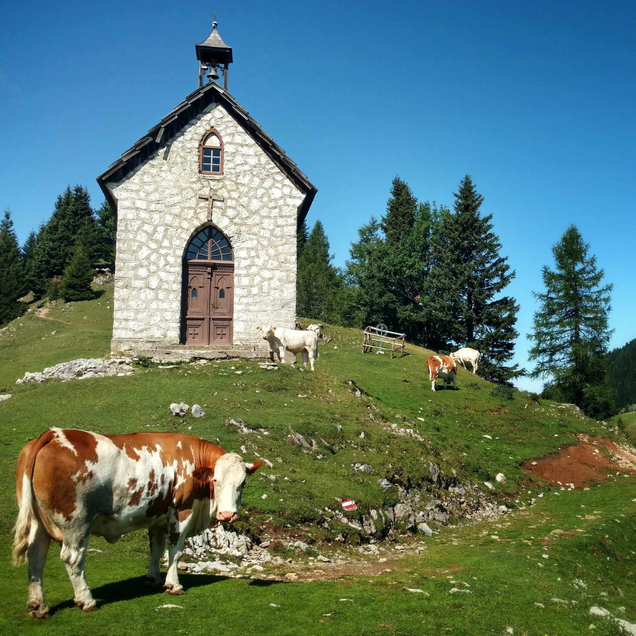 Karnischer_Höhenweg_alps