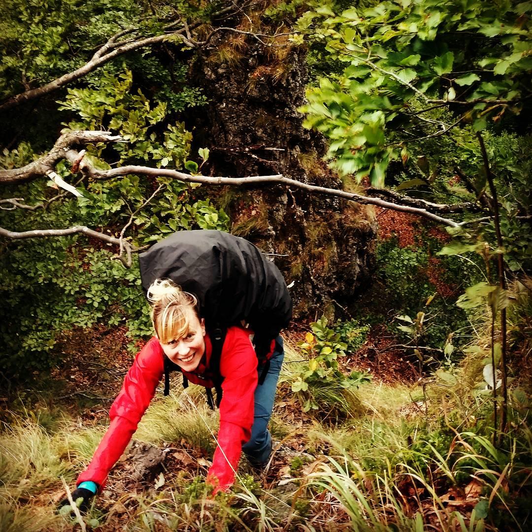 Hiking Klek