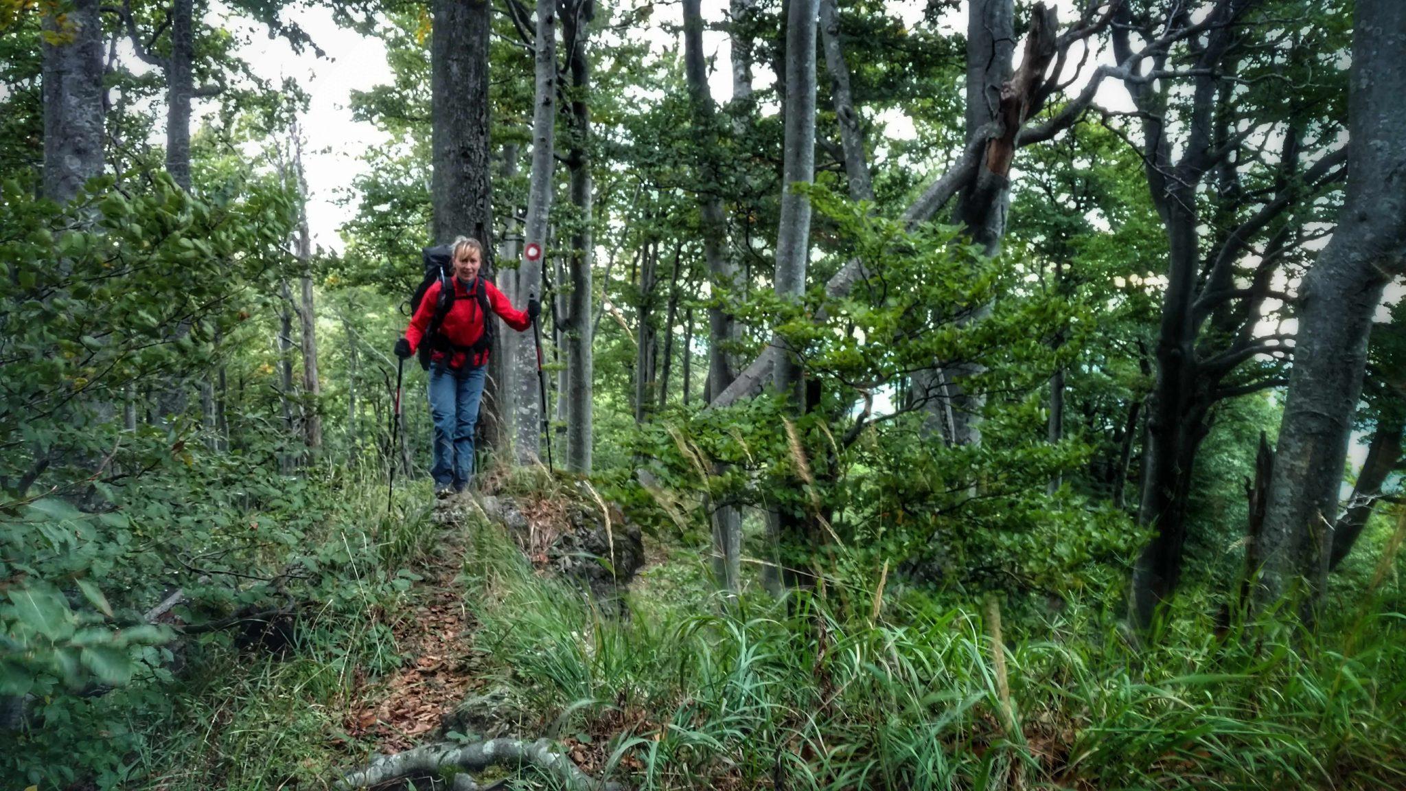 Green_trail_rode_jas