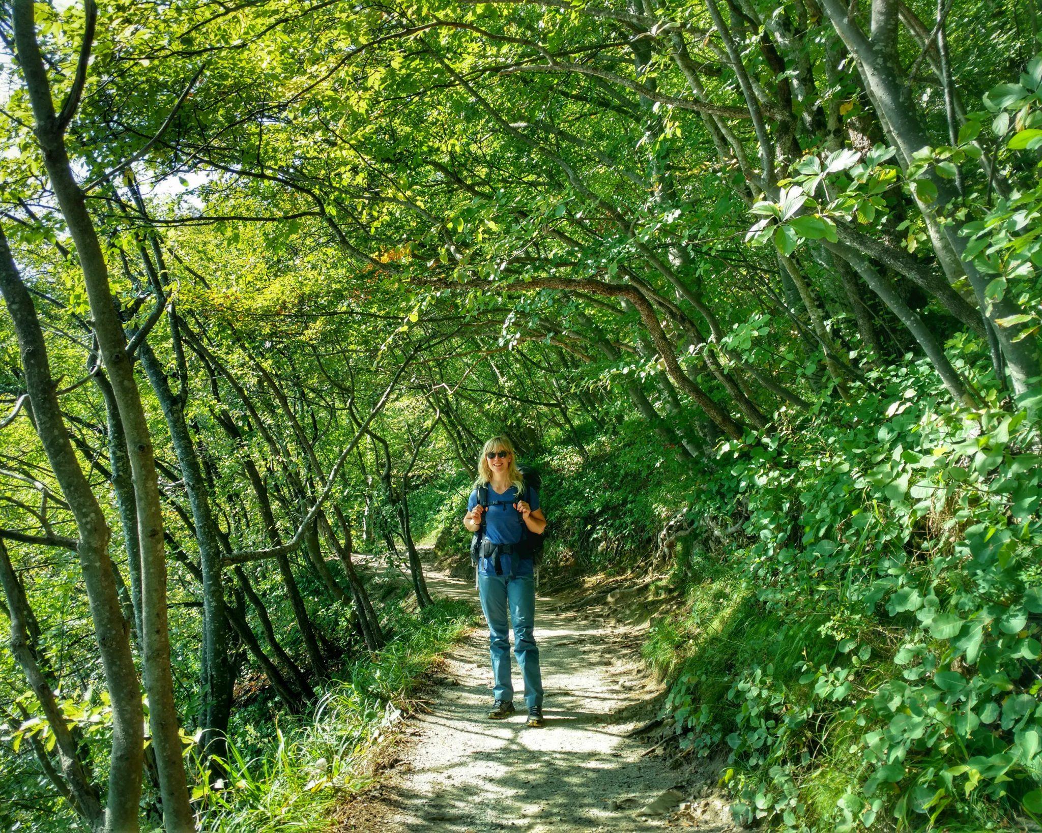 Green_trail_plitvice