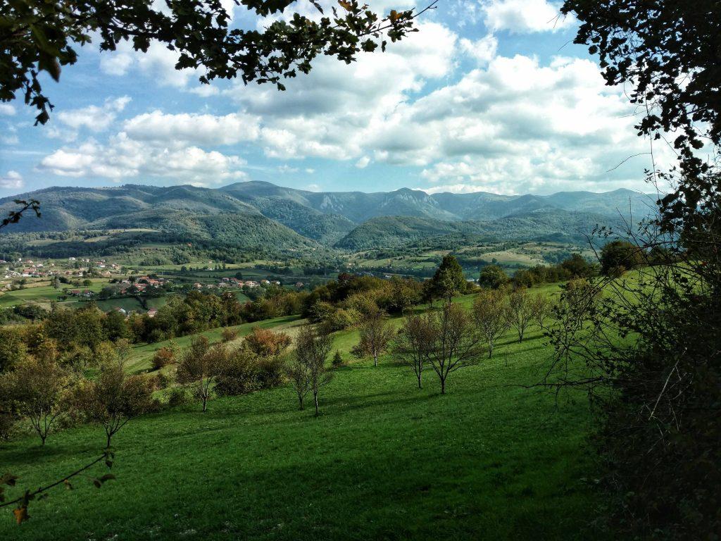 Uitzicht over de groene heuvels | Terug van weggeweest