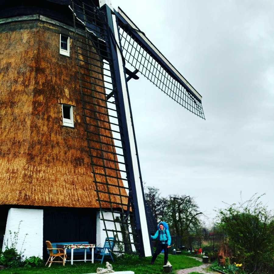 Looking back on December: Flashback Friday - Dutch mill, hiking Pilgrims path NL