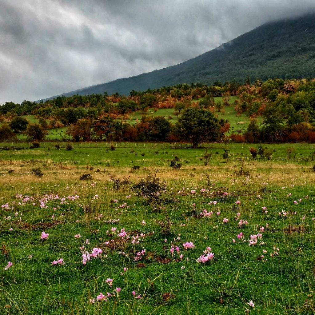 Hiking in Una National Park | Educational Trail