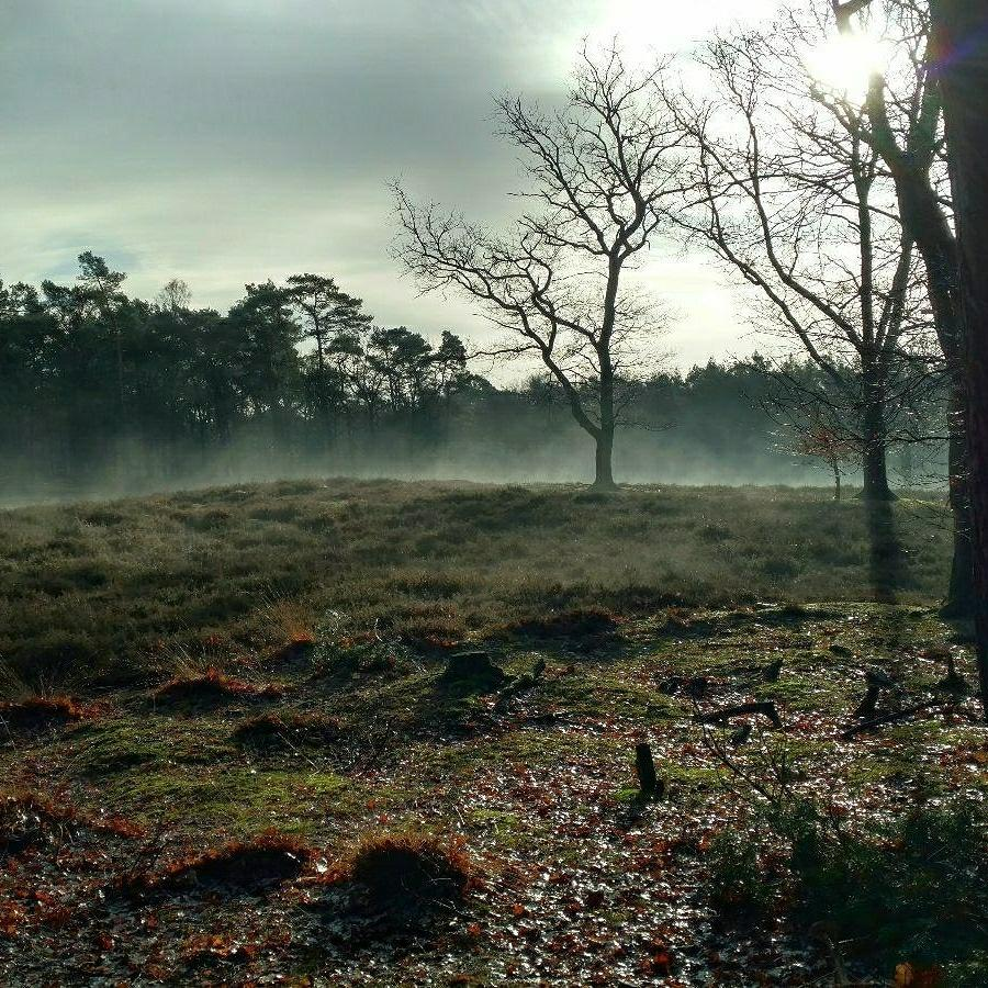 Looking back on January: hiking after the rain
