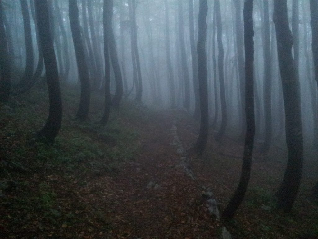 Stories from the heart | Velebit Trail