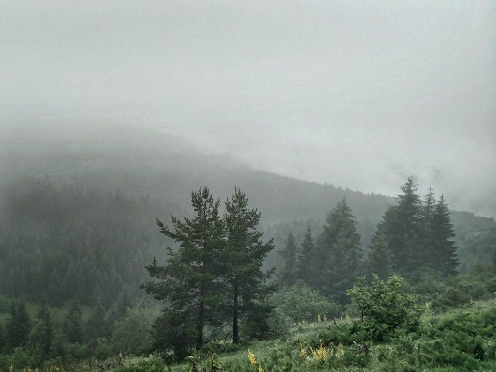 Trebević in de wolken | Heel veel mist en modder op Trebević