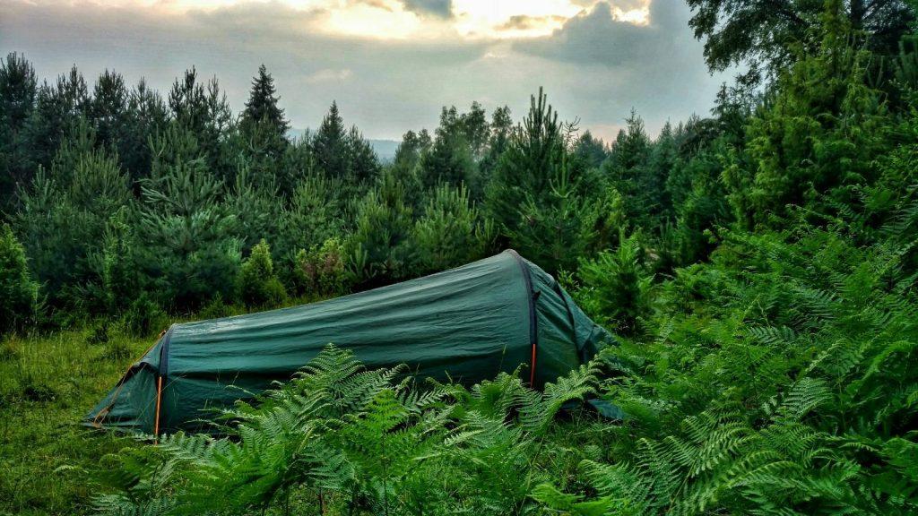 Wildkamperen op de Green Trail tussen de varens | Pale, Romanija