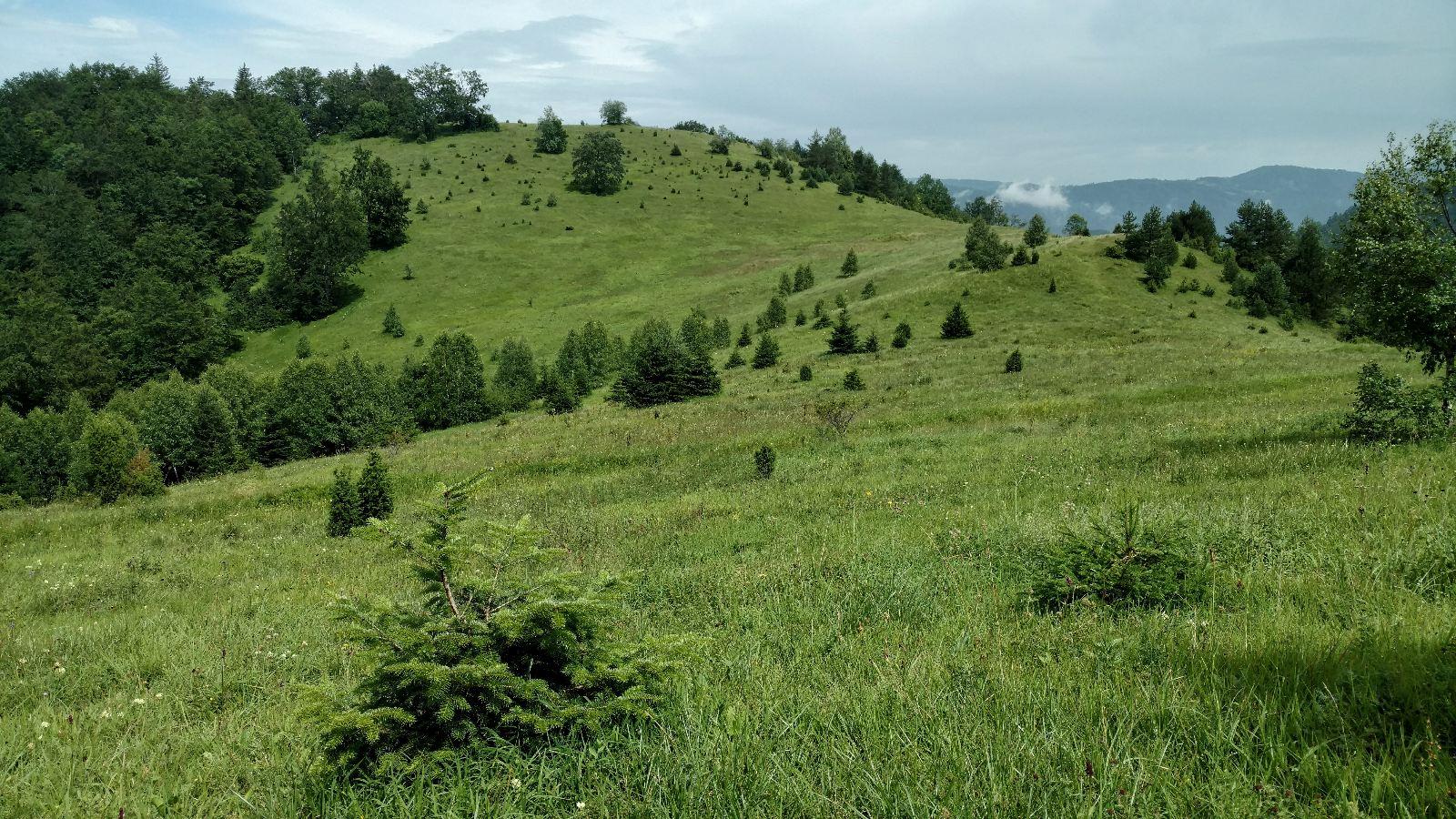 Via DINARICA Green Trail in Serbia, Đurđevo brdo