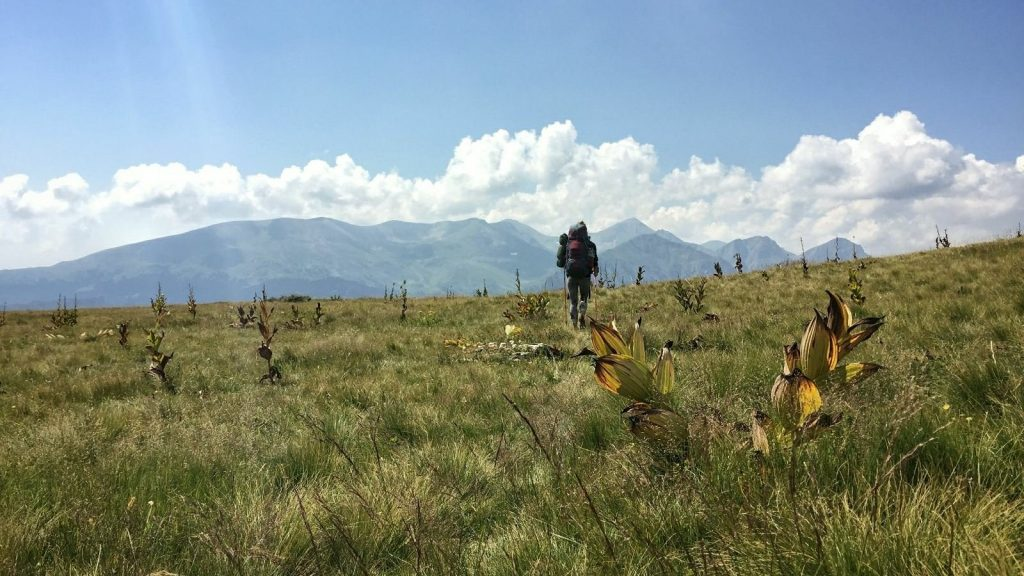 Hiking the Macedonian Transversal on Shar Mountain