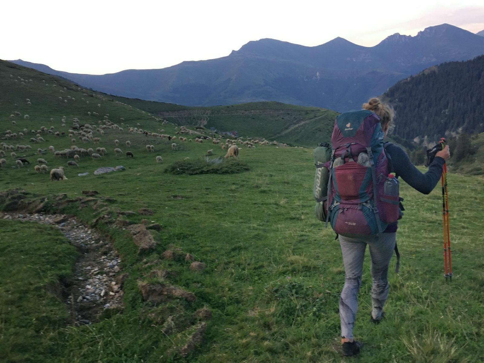 Hiking towards the sheepfold