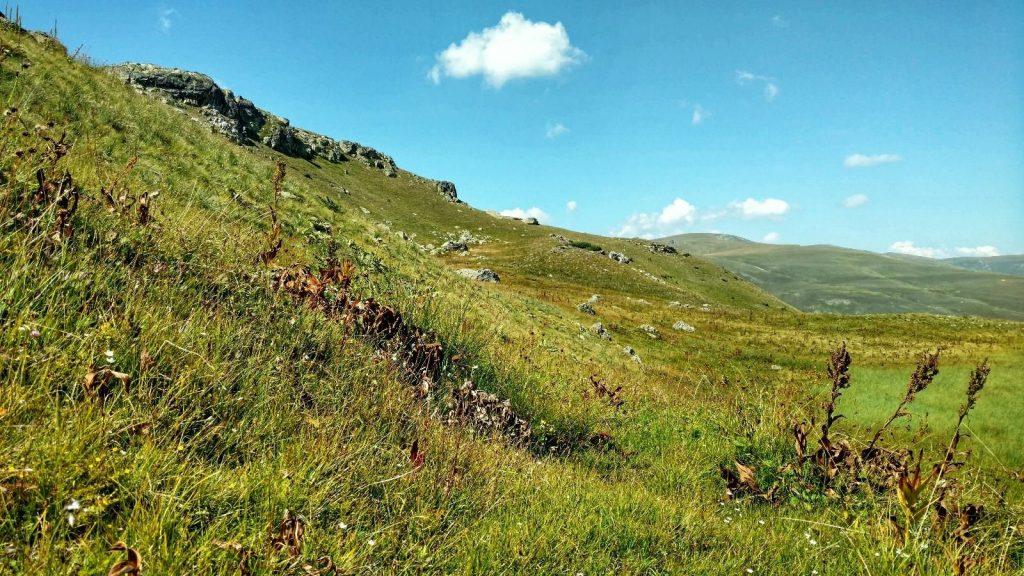 Here I saw a bear on the Macedonian Traverse