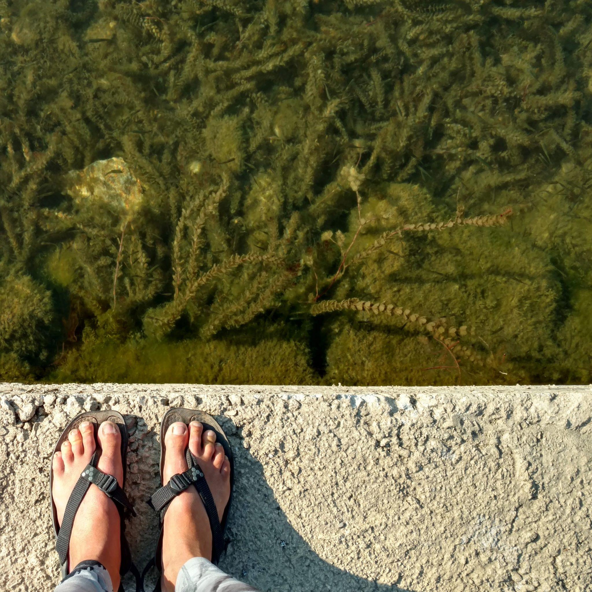 Vivobarefoot sandals at Ohrid
