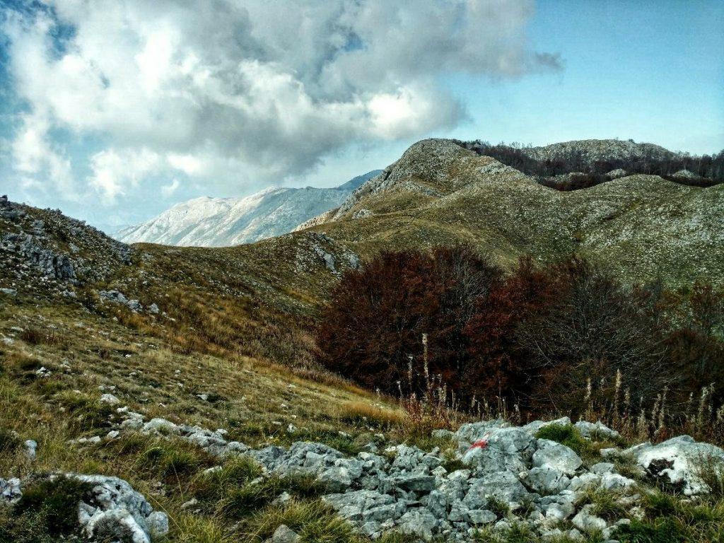 Wandelpad naar Babina Glava | Lovćen National Park