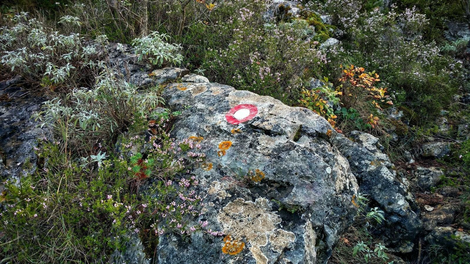 MPO hiking trail mljet