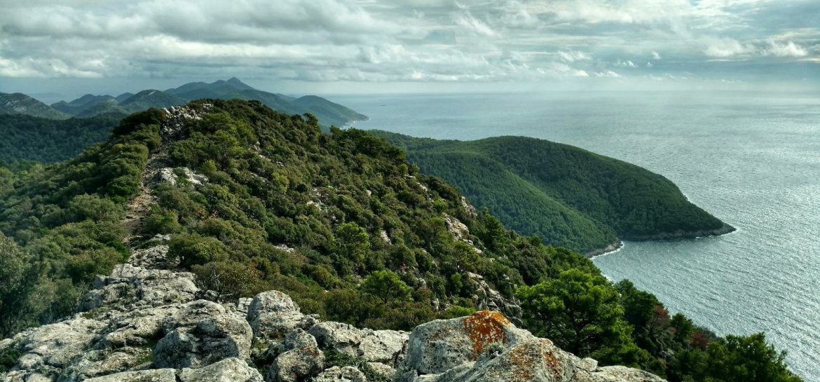 BLOG | The area of Dubrovnik, island Mljet and Pelješac peninsula