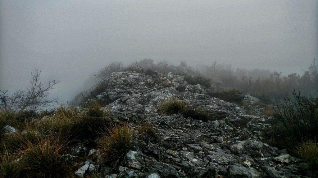 Cloudy Kozjak hike