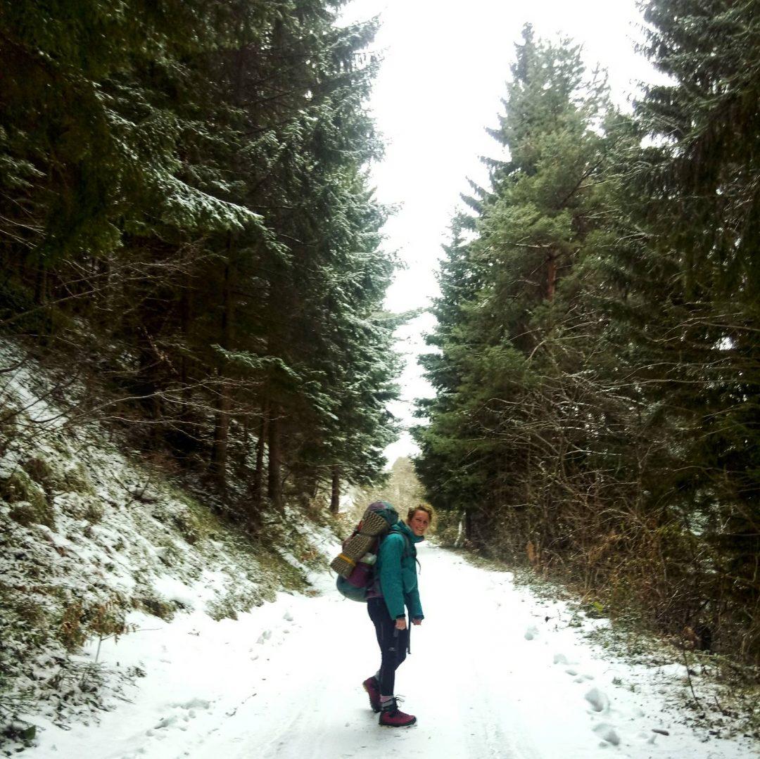 Forest road Trebević to Jure Franko