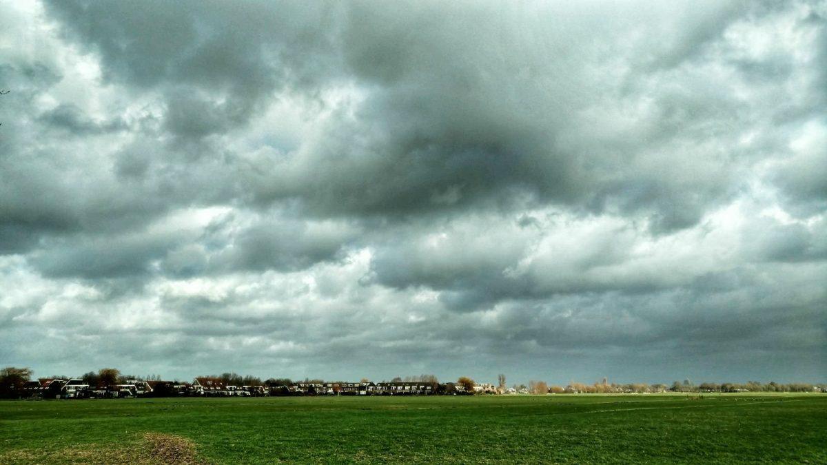 Nederlandse natuurpracht